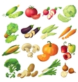 Fresh Vegetables Icon Set vector image