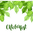 green hops with leaf oktoberfest beer festival vector image vector image