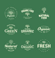 olive tree vintage old logo badge isolated on vector image
