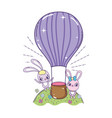 rabbits couple flying in balloon air hot vector image vector image