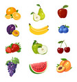 set of colorful fruits icon vector image