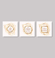 wedding invitation set golden frames vector image vector image
