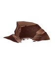 3d realistic brown chocolate pieces vector image vector image