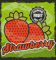 delicious fruit design vector image