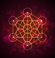 Metatrons Cube - Flower of Life vector image vector image
