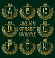 patterned royal coat of arms kit golden letters vector image