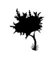 tree black paint silhouette vector image vector image