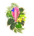 tropical flowers floral arrangement vector image vector image