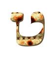 alphabet hebrew passover matzah hebrew letter tet vector image vector image