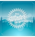 Big winter sale poster vector image vector image