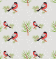 bullfinch seamless background vector image