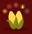 cob for thanksgiving day with set icons vector image vector image