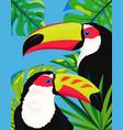 cute toucan card vector image vector image
