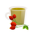 delicious natural tea with hawthorn in a beautiful vector image