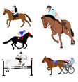 equestrian sports dressage jump show harness vector image vector image