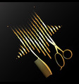 golden scissors comb and star vector image vector image