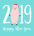 happy new year 2019 text cute fat pig santa hat vector image vector image