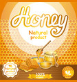 natural honey advertising for retail vector image vector image