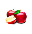 red apple sweet fruit vector image vector image