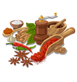 seasonings with condiment and spices vector image vector image