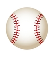 ball baseball equipment isolated icon vector image vector image