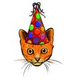 cartoon curious peeking cat vector image vector image