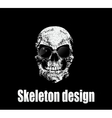 Design for poster or t-shirt print with skull vector image vector image