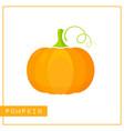 isolated orange pumpkin memory training card vector image