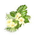 label with plumeria flowers bouquet of aromatic vector image vector image