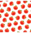 Seamless Pattern with Tomato vector image