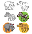 wild animals Zebra camel rhinoceros vector image