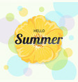 summer flowers background or summer floral design vector image vector image