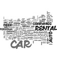 a rookies guide to car rentals text word cloud vector image vector image