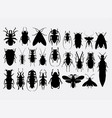 bug insect arachnid animal silhoutte vector image