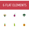 flat icons cabbage apricot broccoli and other vector image vector image