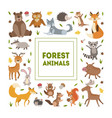 forest animals banner template with cute wild vector image vector image