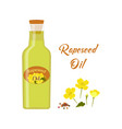rapeseed oil isolated on white vector image vector image