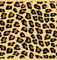 seamless pattern with leopard skin vector image vector image
