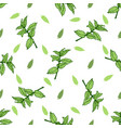 sketch herbal mint tea hand drawn seamless pattern vector image vector image