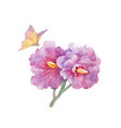 watercolor garden flowers with butterfly isolated vector image