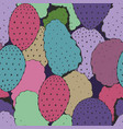 colorful seamless pattern with succulents vector image