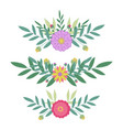 border flowers set leaves and flowers design for vector image