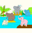 family of african elephants color book for vector image vector image