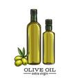 glass bottle olive oil vector image vector image