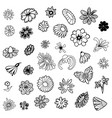 hand drawn sketch of flower symbols vector image