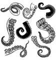 set octopus squid tentacles in engraving style vector image vector image