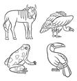 aninals set vulture toucan frog gnu black and vector image