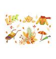 autumn season objects collection autumnal design vector image