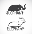 Elephant design on white background vector image vector image
