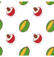 fruit mango and rambutan seamless pattern vector image